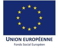logo-FSE-web
